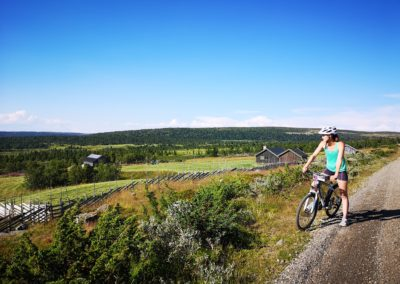 Day trip to Lillehammer via Nordseter